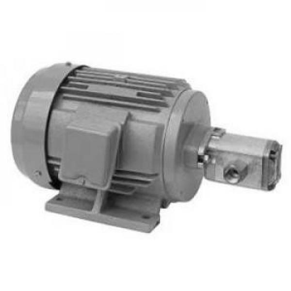 100CYZ-A-40 Stoktaki Hidrolik Pompa #3 image